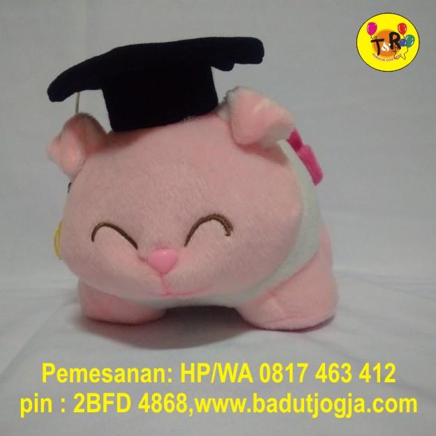 boneka-babi-wisuda