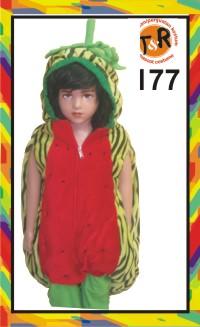 177.penyewaan kostum semangka