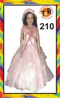 210.penyewaan kostum pesta