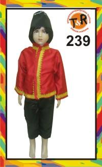 239.persewaan kostum tradisional