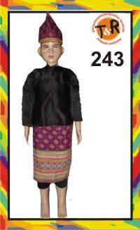 243.persewaan kostum tradisional