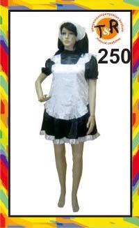 250.persewaan kostum pelayan
